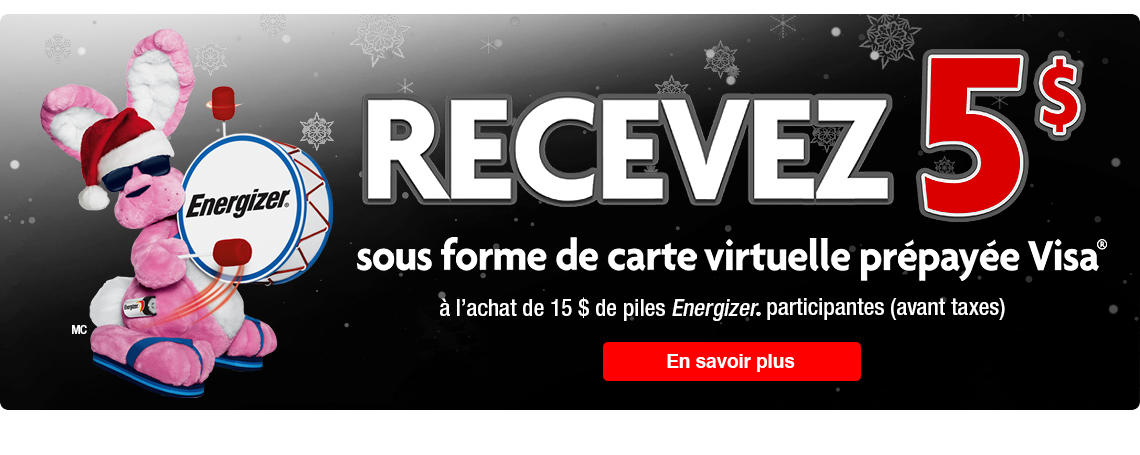 Homepage-Banners-resized-VISA-FR